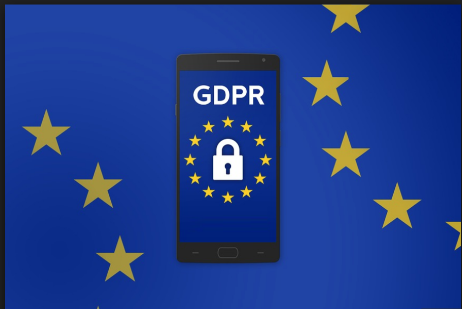 GDPR and WHOIS