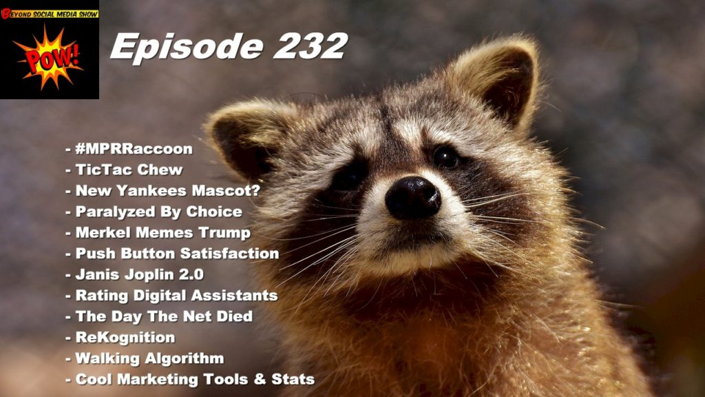 Beyond Social Media - MPR Raccoon - Episode 232