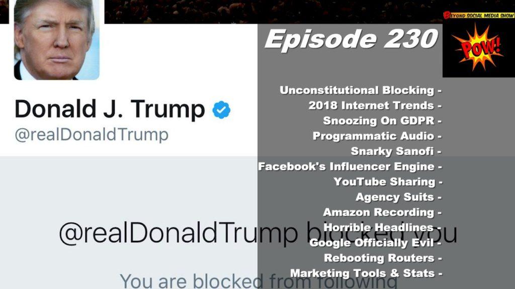 Beyond Social Media - Trump's Twitter Blocking - Episode 230