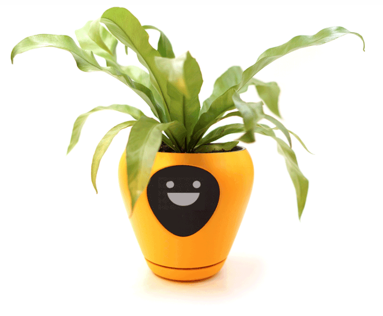 App transforms plants into virtual pets.