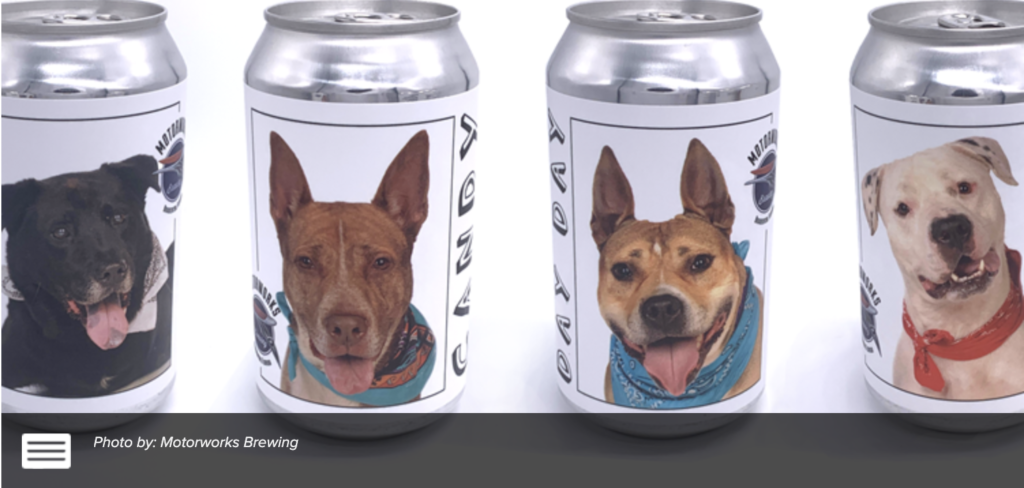 Florida brewery puts shelter dog photos on beer cans to help find forever homes