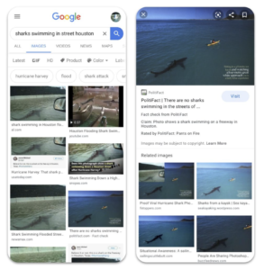 Screenshot: Google Images Fact Check