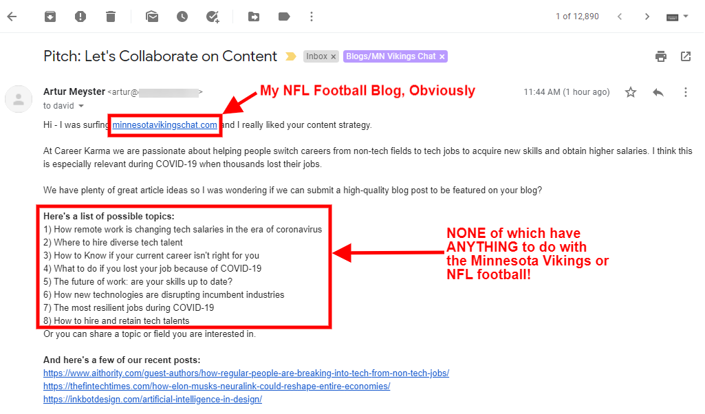 Screenshot: Completely Irrelevant Pitch To Minnesota Vikings Chat